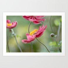Anemones Art Print