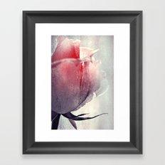Ice Rose Framed Art Print