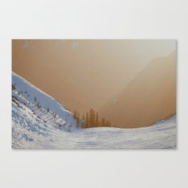 """Untitled"" Canvas Print"