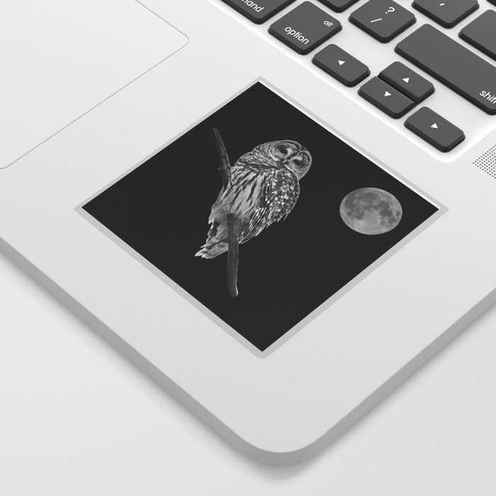 Owl, See the Moon (bw) Sticker