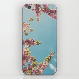 Cherry Blossom Delight iPhone Skin