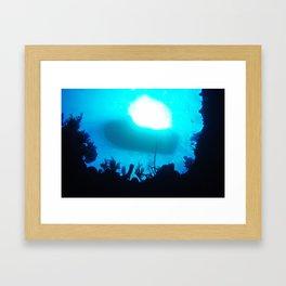 Underwater in Grand Cayman Framed Art Print