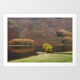 Autumnal colour. Buttermere, Cumbria, UK. Art Print