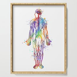 Human Body With All Nerves Art Gift Anatomy Gift Colorful Watercolor Gift Neural Art Medical Art Serving Tray