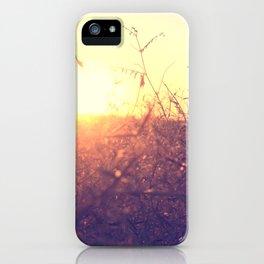 Evening in Summer iPhone Case