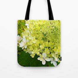 Elegant Chartreuse Green Limelight Hydrangea Macro Tote Bag