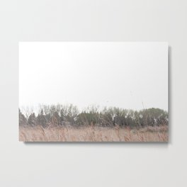 Prarie grass Nose Hill Metal Print