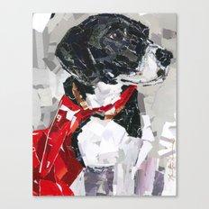 Chopper with a cape Canvas Print
