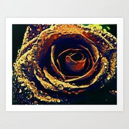 Rose with tears crossing Art Print