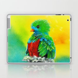 Quetzal - the most beautiful bird Laptop & iPad Skin