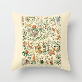 Wildflowers and Roses // Fleurs III by Adolphe Millot 19th Century Science Textbook Artwork Throw Pillow