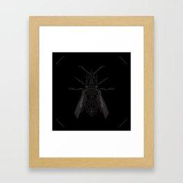 entomology 02. (ii) Framed Art Print