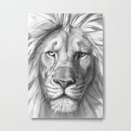 Lion G106 Metal Print