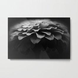 petal pusher Metal Print