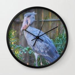 Do Do Bird Wall Clock