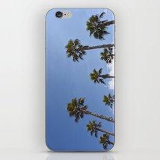 Sky Palms iPhone & iPod Skin