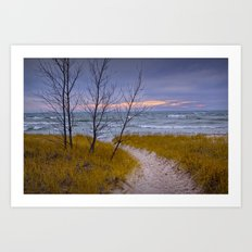 Sunset Photograph of a Trail to the Beach No 0028 Art Print
