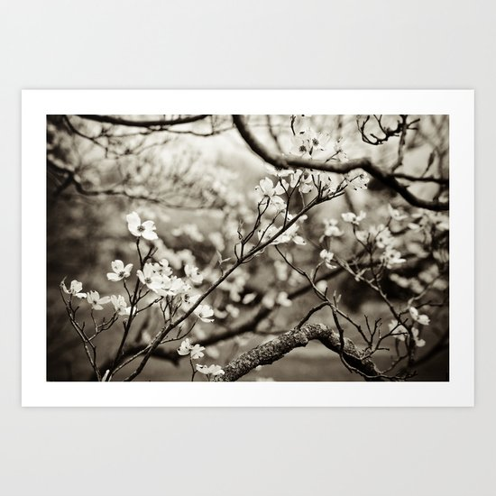 Surrounded by Possibility - B&W Art Print