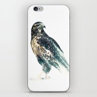 falcon iPhone & iPod Skins featuring Falcon by RIZA PEKER
