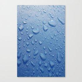 BlueDew Canvas Print