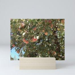 Apples Mini Art Print