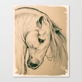 Andalusian Beauty Portrait In Sepia Canvas Print