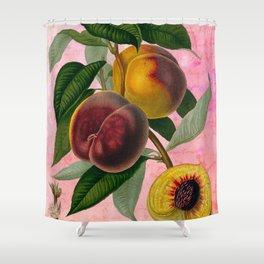 Vintage Botanical Collage, Bradford Peach Shower Curtain