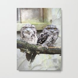 Two Tawny Frogmouths Metal Print