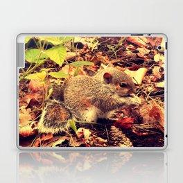 Little shy Squirrel  Laptop & iPad Skin