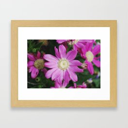 Purple stuff Framed Art Print