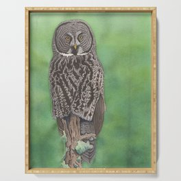 Great Gray Owl Serving Tray