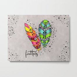 Two bright tribal feathers Metal Print