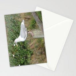 My Buddy Stationery Cards