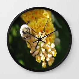 Hello Mr Bumblebee! Wall Clock