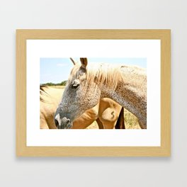 Abilene Horses Framed Art Print