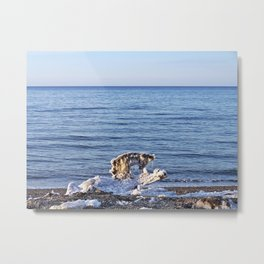 Something on the Beach Metal Print