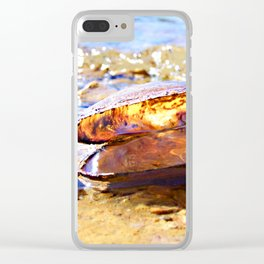 In The World Of A Clam Shell Clear iPhone Case