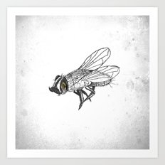 French Fly Art Print