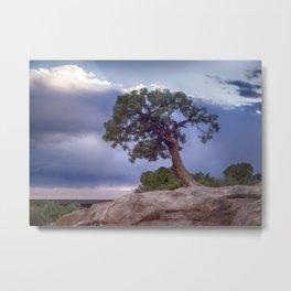 The Tree on the Edge Metal Print
