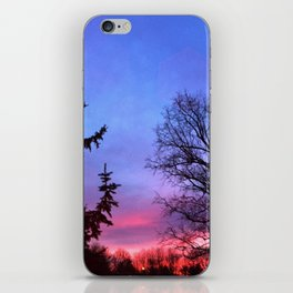 Shades Sunset iPhone Skin