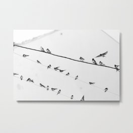 Swallows on Wires #society6 #decor #buyart #kirovair Metal Print