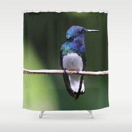 Kolibri Design Ilustration Shower Curtain