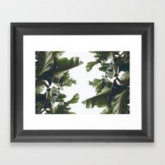 Birds of California Framed Art Print