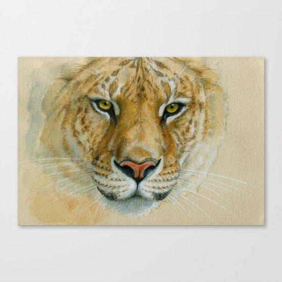 Liger CC007 Canvas Print