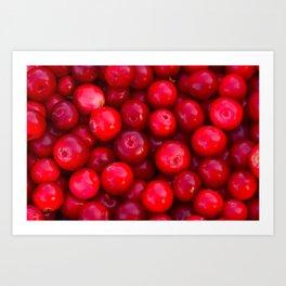 Lingonberry berry fresh forest fruits Art Print