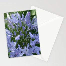 African Lily Stationery Cards