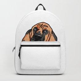 Bloodhound Bluthund St. Hubertushund Dog Puppy Backpack