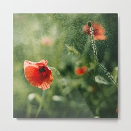 Red Poppy on Green background with bokeh Metal Print