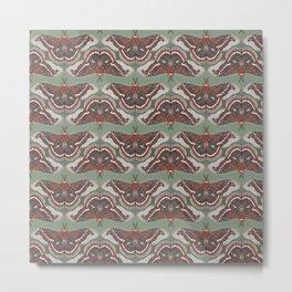 Cecropia Moth Metal Print