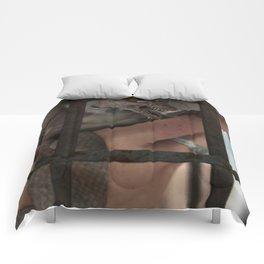 The Aviary Comforters